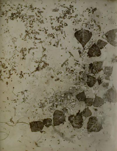 Peter Griesbeck, 100 x 80 cm (29)